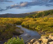 Tim Fitzharris - Alpine stream, Rollins Pass near Winter Park, Colorado