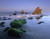 Tim Fitzharris - Seastacks on El Matador State Beach, Malibu, California