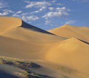 Tim Fitzharris - Sand dunes, Great Sand Dunes National Monument, Colorado