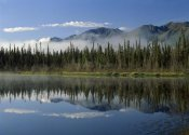 Tim Fitzharris - Boreal forest along lake edge, Nutzotin Mountains, Alaska