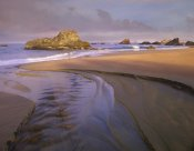 Tim Fitzharris - Creek flowing into ocean at Harris Beach State Park, Oregon