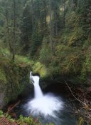 Tim Fitzharris - Punchbowl Falls at Eagle Creek, Columbia River Gorge, Oregon