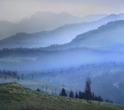 Tim Fitzharris - Mist over Absaroka Range, Yellowstone National Park, Wyoming