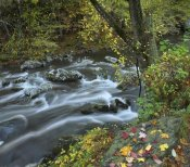 Tim Fitzharris - Little River, Great Smoky Mountains National Park, Tennessee