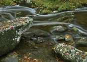 Tim Fitzharris - Laurel Creek, Great Smoky Mountains National Park, Tennessee