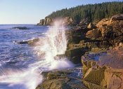 Tim Fitzharris - Atlantic Coast near Thunder Hole, Acadia National Park, Maine
