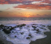 Tim Fitzharris - Coast at sunset, Blowing Rocks Beach, Jupiter Island, Florida
