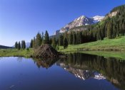 Tim Fitzharris - Gothic Mountain and Beaver Lodge, near Crested Butte, Colorado