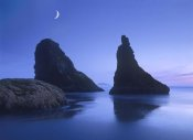 Tim Fitzharris - Sea stacks at dusk along Bandon Beach with rising moon, Oregon