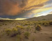 Tim Fitzharris - Storm clouds over Great Sand Dunes National Monument, Colorado