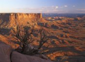 Tim Fitzharris - View from Green River overlook, Canyonlands National Park, Utah