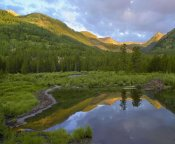 Tim Fitzharris - Pond and boreal forest, Ruby Range near Crested Butte, Colorado