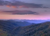Tim Fitzharris - Newfound Gap, Great Smoky Mountains National Park, North Carolina