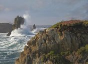 Tim Fitzharris - Pounding waves and rocky shoreline at Piedras Blancas, California