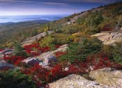 Tim Fitzharris - Atlantic coast from Cadillac Mountain, Acadia National Park, Maine