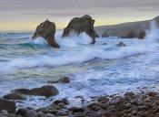 Tim Fitzharris - Cove and seastacks near Garrapata State, Beach Big Sur, California