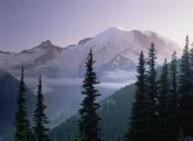 Tim Fitzharris - Mt Rainier as seen at sunrise, Mt Rainier National Park, Washington