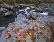 Tim Fitzharris - Little Pigeon River, Great Smoky Mountains National Park, Tennessee