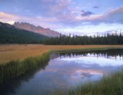 Tim Fitzharris - Dolomite Peak and Bow River backwaters, Banff National Park, Alberta