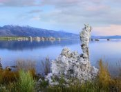 Tim Fitzharris - Wind and rain eroded tufa towers along shore of Mono Lake, California