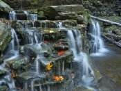 Tim Fitzharris - Kitchen Creek cascades, autumn, Ricketts Glen State Park, Pennsylvania