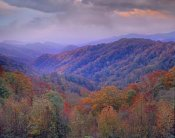 Tim Fitzharris - Autumn deciduous forest, Great Smoky Mountains National Park, Tennessee