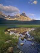 Tim Fitzharris - Mount Chephren and Waterfowl Lake, Banff National Park, Alberta, Canada