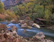 Tim Fitzharris - Virgin River flowing through canyon in autumn, Zion National Park, Utah