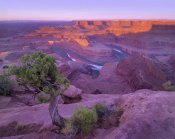 Tim Fitzharris - Colorado River flowing through canyons of Dead Horse Point State Park, Utah