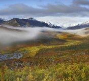 Tim Fitzharris - Fog over tundra, Tombstone Range, Tombstone Territorial Park, Yukon, Canada