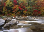 Tim Fitzharris - Wild river in eastern hardwood forest, White Mountains National Forest, Maine