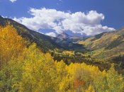 Tim Fitzharris - Haystack Mountain with aspen forest, Maroon Bells-Snowmass Wilderness, Colorado