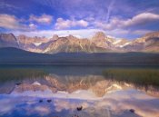 Tim Fitzharris - Mount Chephren reflected in Waterfowl Lake, Banff National Park, Alberta, Canada