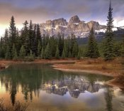 Tim Fitzharris - Castle Mountain and boreal forest reflected in lake, Banff National Park, Alberta