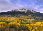 Tim Fitzharris - East Beckwith Mountain and trees in fall color, Gunnison National Forest, Colorado