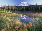 Tim Fitzharris - Mt Rainier and wildflowers at Reflection lake, Mt Rainier National Park, Washington