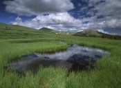 Tim Fitzharris - Cumulus clouds reflected in pond at Guanella Pass, Arapaho National Forest, Colorado