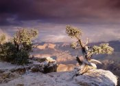 Tim Fitzharris - South Rim of Grand Canyon with a dusting of snow, Grand Canyon National Park, Arizona