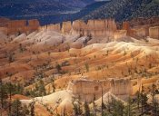Tim Fitzharris - Landscape of eroded formations called hoodoos and fins, Bryce Canyon National Park, Utah