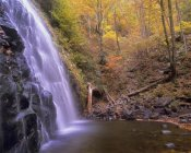 Tim Fitzharris - Crabtree Falls cascading into stream in autumn forest, Blue Ridge Parkway, North Carolina
