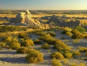 Tim Fitzharris - Coyote Bush and eroded features bordering grasslands, Badlands National Park, South Dakota