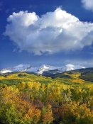 Tim Fitzharris - East Beckwith Mountain flanked by fall colored Aspen forests under cumulus clouds, Colorado