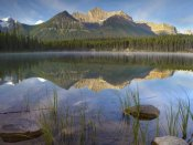 Tim Fitzharris - Bow Range and boreal forest reflected in Herbert Lake, Banff National Park, Alberta, Canada