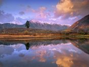 Tim Fitzharris - La Plata and Twin Peaks in the Sawatch Range reflected in Twin Lakes with a lone tree, Colorado