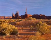 Tim Fitzharris - Totem Pole and Yei Bi Chei with sand dunes and shrubs, Monument Valley, Arizona and Utah border