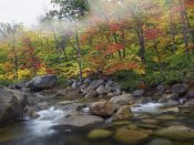 Tim Fitzharris - Swift River flowing through fall colored forest, White Mountains National Forest, New Hampshire