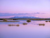 Tim Fitzharris - Full moon rising over Sangre de Cristo Mountain Range, Alamosa National Wildlife Refuge, Colorado