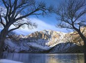 Tim Fitzharris - Laurel Mountain and Convict Lake framed by barren trees in winter, eastern Sierra Nevada, California