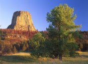 Tim Fitzharris - Devil's Tower National Monument showing famous basalt tower, sacred site for Native Americans, Wyoming