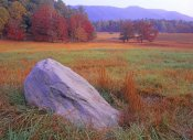 Tim Fitzharris - Boulder and autumn colored deciduous forest, Cades Cove, Great Smoky Mountains National Park, Tennessee